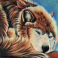 Slumber Time by Kathy Stocks