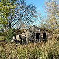Small Abandoned Shed by Susan Wyman