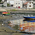 Small Boats And Seagulls In Galicia by RicardMN Photography