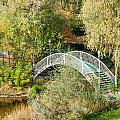 Small Bridge In The Park by Alain De Maximy