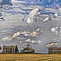 Small Farms Fading Fast by Randall Branham
