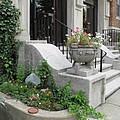 Small Garden In Big City by Barbara McDevitt