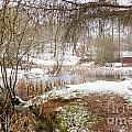 Small Lake In The Snow by Ann Garrett