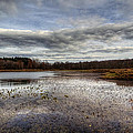 Small Lake Scene by David Dufresne