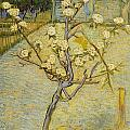 Small Pear Tree In Blossom by Vincent van Gogh