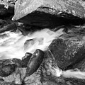 Small Stream Smoky Mountains Bw by Cynthia Woods