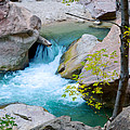 Small Virgin River Waterfall In Zion Canyon Narrows In Zion Np-ut by Ruth Hager