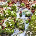 Small Waterfall by Gabriela Insuratelu