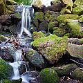 Small Waterfall In Marlay Park Dublin by Semmick Photo