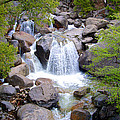 Small Waterfall Near Hwy 120 Roadside In Yosemite Np-ca- 2013 by Ruth Hager