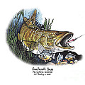 Smallmouth Bass by Art  MacKay