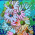 Smiling Daisies by Mindy Newman