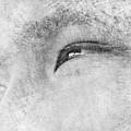 Smiling Eyes by Kume Bryant