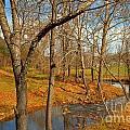 Smith River Virginia by Adam Jewell