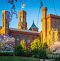 Smithsonian Castle by Inge Johnsson