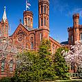 Smithsonian Castle Wall by Inge Johnsson