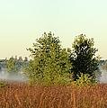 Smokey Autumn Prairie by Bonfire Photography