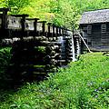 Smoky Mountain Mill by Marty Fancy