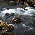Smokey Mountain Stream In Autumn No.2 by Randall Nyhof