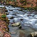 Smokey Mountain Stream by Randy Walton