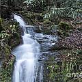 Smokey Mountain Waterfall by Michael Waters