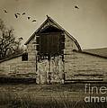 Smokey Prairie Barn  by Janice Pariza