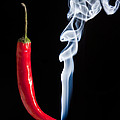 Smoking Red Hot Chilli Pepper  by Matthew Gibson