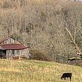 Smoky Mountain Barn 10 by Douglas Barnett