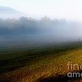 Smoky Mountain Blush by Douglas Stucky
