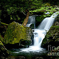 Smoky Mountain Falls by Paul W Faust -  Impressions of Light