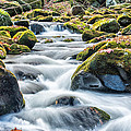 Smoky Mountain Rapids by Victor Culpepper