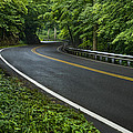 Smoky Mountain Road After Spring Rain E70 by Wendell Franks