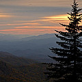 Smoky Mountain Sentinel  by Eric Albright