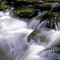 Smoky Mountain Stream by Paul W Faust -  Impressions of Light