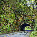 Smoky Mountain Tunnel by Cricket Hackmann