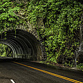 Smoky Mountain Tunnel In The Rain E123 by Wendell Franks