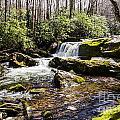Smoky Mountain Waterfalls by Paul Mashburn