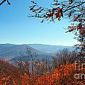 Smoky Mountains 3 by Nancy L Marshall