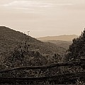 Smoky Mountains Lookout Point by Dan Sproul