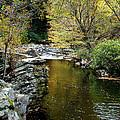 Smoky Mountian River by Sandy Keeton