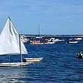 Smooth Sailing by Ira Shander