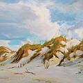 Smyrna Dunes by Laura Bates