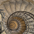 Snailing Stairs by Jean-Laurent Tari