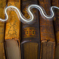 Snake And Antique Books by Garry Gay