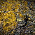 Snake Bird by Marvin Spates