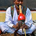 Snake Charmer by Gaurav Singh