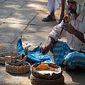 Snake Charmer Hampi Bazaar by Carol Ailles