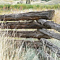 Snake Fence And Sage Brush by Ann E Robson