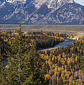 Snake River Overlook One by Bob Phillips