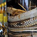 Snakes In Snake-flavoured Alcohol Bottles  by Sami Sarkis